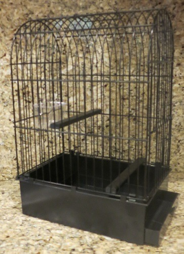 2GR York Show Cage 9.5