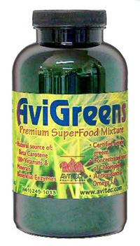 AviGreens-Wheat Grass, Barley Grass, Alfalfa Grass and Chlorella - Cage Bird Supplement