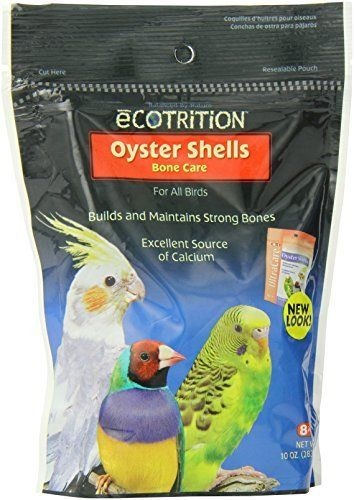 Oyster Shells for all birds