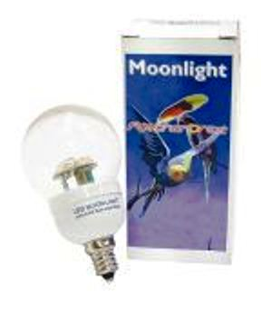 FeatherBrite Blue LED Moonlight Bulb Bird Cage Lighting