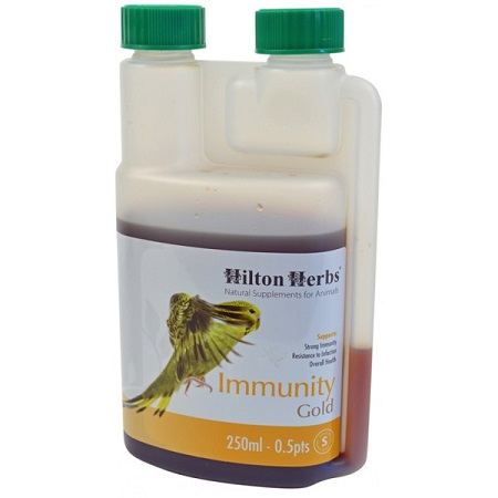 Immunity Gold by Hilton Herbs - Herbal Remedy for birds
